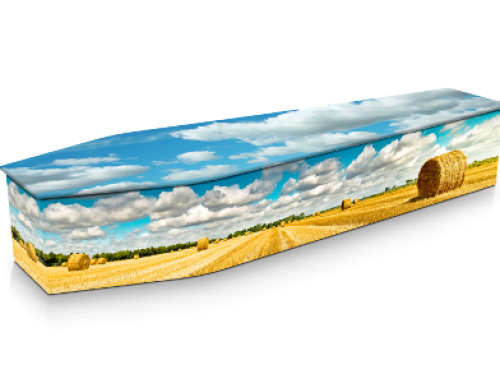 Wheat Field Expression Coffin